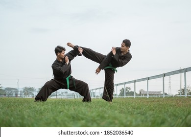 two fighters wearing pencak silat uniforms fighting in an outdoor background