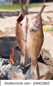 Two fish being smoked over a camp fire
