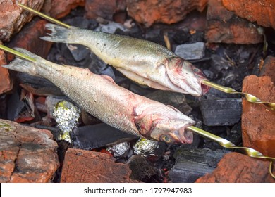 two fish on skewers on an open fire grill barbecue burning charcoal