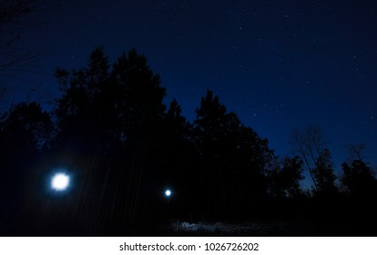 Two flashlights in a dark forest with blue sky and stars above