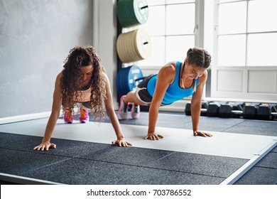 Two focused young female friends in sportswear doing pushups together on the floor of a gym