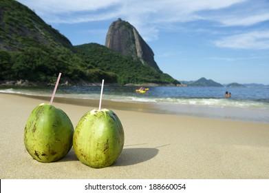 Two fresh coco gelado drinking coconuts on Red Beach Praia Vermelha at Sugarloaf Mountain Rio de Janeiro Brazil