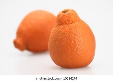 two fresh orange juicy florida tangerine isolated