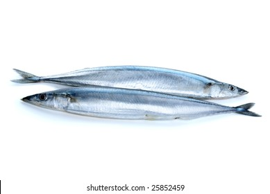 Two fresh pacific saury fishes isolated on the white background