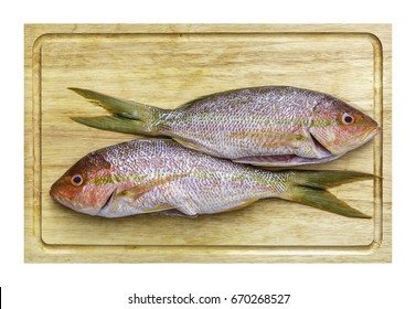 Two Fresh Wildcaught Yellowtail Snappers with their entrails remove placed on top of a cutting board over a White Background