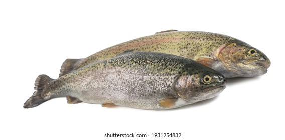 Two freshly caught trouts isolated on white background