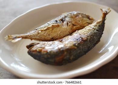 Two Fried Mackerels  on white dish