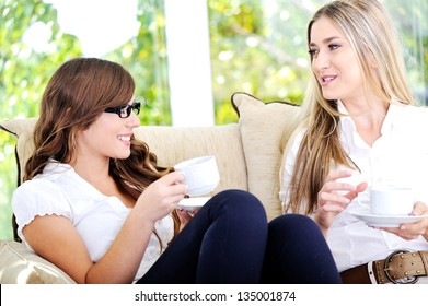 Two friends have a good time in sunny cafe