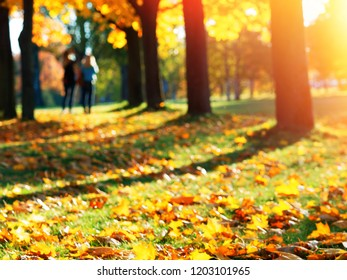 Two friends standing in the atumn park bokeh background