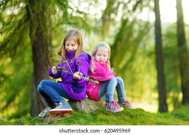 Two funny little sisters having fun during forest hike on beautiful autumn day in Italian Alps. Active leisure with small kids. Family hiking.