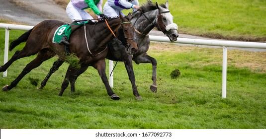 Two galloping race horses competing for first position, kicking up grass on the track