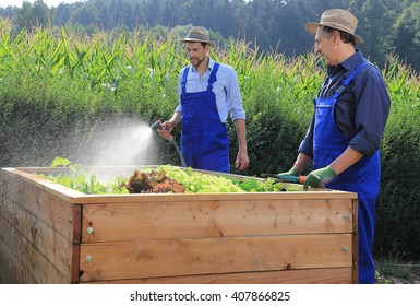 Two gardeners pouring a raised salad bed in garden