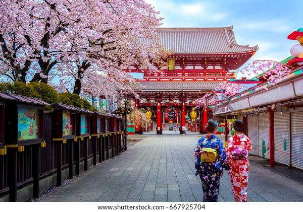 Two geishas wearing traditional japanese kimono among Sensoji Temple in Asakusa Tokyo, Japan.