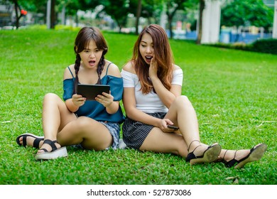 Two girl friends sitting on the grass looking on a tablet computer amazed