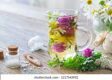 Two glass mugs of healthy herbal tea or infusion, bottles of homeopathic globules and medicinal herbs. Homeopathy and herbal medicine.