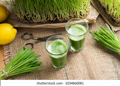 Two glasses of barley grass juice with freshly grown barley grass and lemons in the background