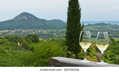 Two glasses of fine riesling wine in the Badacsony region in Hungary out in the nature