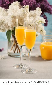 Two glasses of mimosa cocktail (champagne with orange juice) and lilac