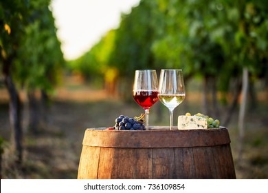 Two glasses of wine with food on a barrel in a vineyard