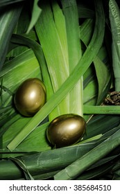 two gold egg in a nest of green leaf, vertical frame