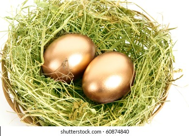 Two golden hen's eggs in the grassy nest isolated on white