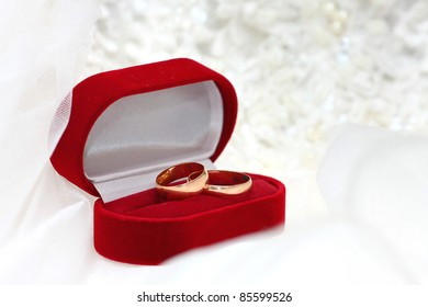 Two golden wedding rings in red box