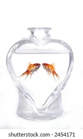 Two goldfish face one another in a heart-shaped vase filled with water. The background is white.