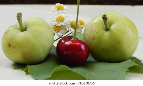 Two green apples, red berry and chamomile on green leaf