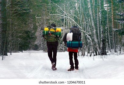Two guys with equipment go for a hiking in the winter forest in Karelia