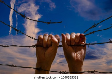 Two Hand Hanging on the Barbed Wire