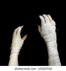 Two hand of mummy on dark background.