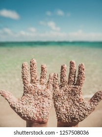 two hands covered in coarse sand in front of a tropical beach
