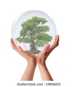Two hands holding a tree in a transparent bubble showing growth.