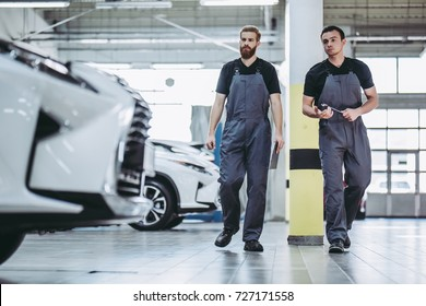 Two handsome mechanics in uniform are working in auto service. Car repair and maintenance.
