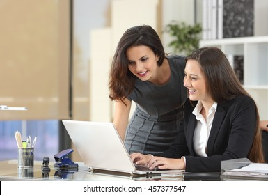 Two happy businesswomen coworking with a laptop in a desktop at office
