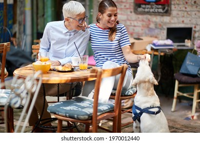 Two happy female friends of different generations enjoy feeding a dog while they have a drink in a pleasant atmosphere in the bar. Leisure, bar, friendship, outdoor