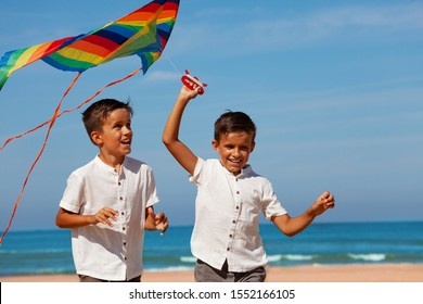 Two happy handsome little laughing boys with kite