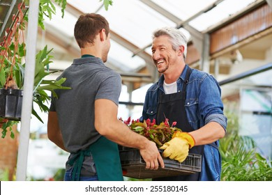 Two happy men working together as gardener in nursery shop
