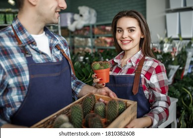 Two happy smiing gardeners and workers holding pot with small cactus in a flowers shop