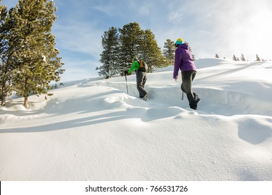two happy women traveler with backpacks walking in winter mountains forest.