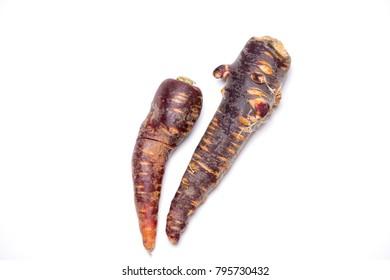 two healthy violet carrots (Purple Haze)