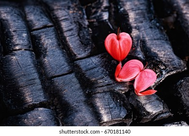 Two hearts on the coals. One whole, the second broken.