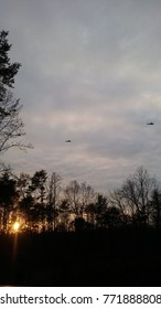 Two helicopters flying with sunset and trees