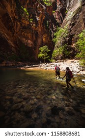 Two Hikers through the Virgin River Narrows in Zion National Park, Utah, USA