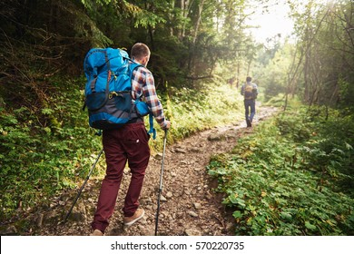 Two hikers walking along a trail deep in the forest