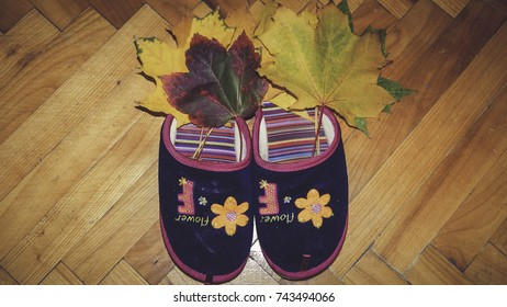 Two home slippers with flower sign and autumn yellow, red and green leaves in them on wooden floor