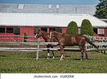 Two horses in a corral with a red barn.