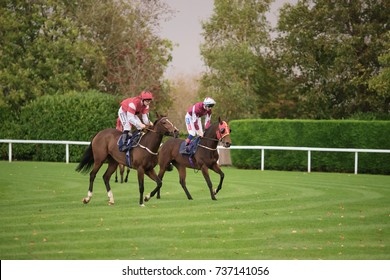 Two horses finishing the 3.30 race at Windsor Racecourse on MONDAY 16 OCTOBER 2017