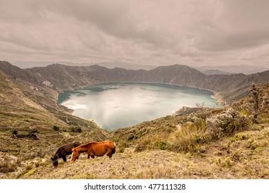 Two Horses Grazing Near Quilotoa Lagoon, Ecuador, South America