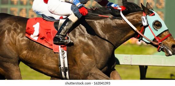 Two Horses and Jockeys Come Aross Finish Line Neck and Neck Number One